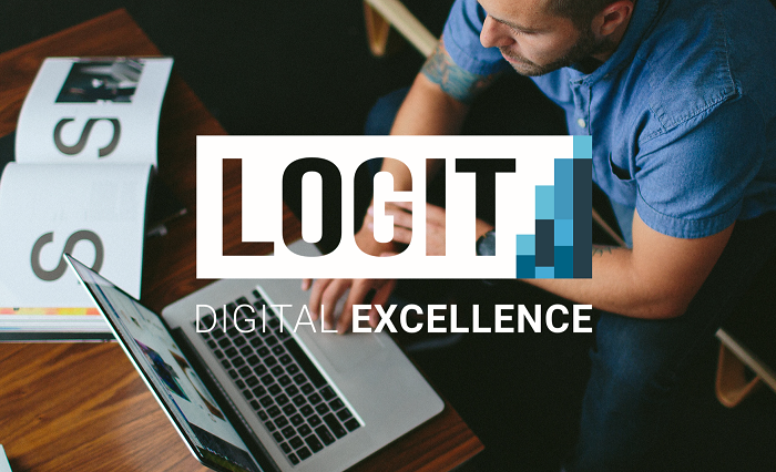 Logit consulting company for mature B2B companies