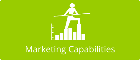Marketing capabilities